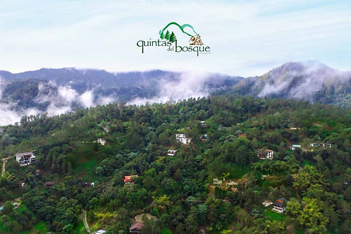 Terreno Rep Dom Jarabacoa Proyecto Quintas del Bosque