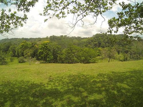 Terreno Costa Rica Cabanga de Guatuso