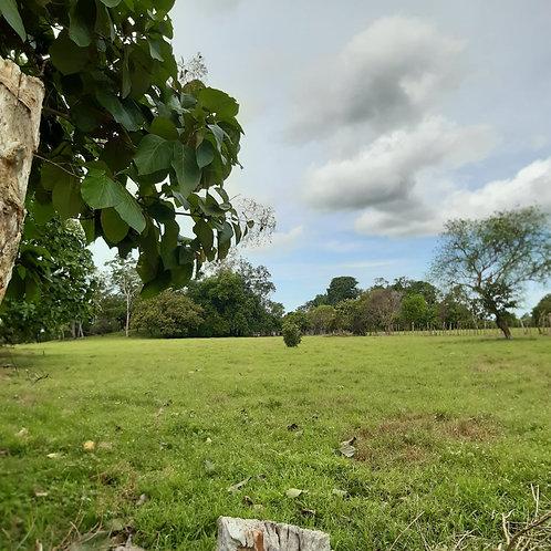 Terreno Panama Divala Chiriqui