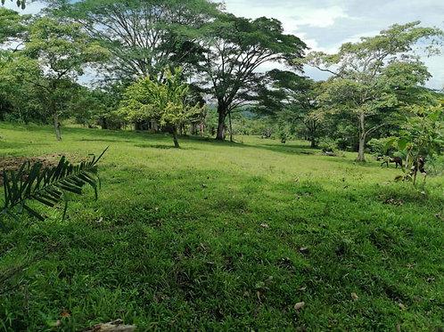 Terreno Costa Rica Caoba Santa Cecilia Guanacaste