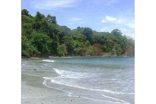 Isla Panama Chiriqui