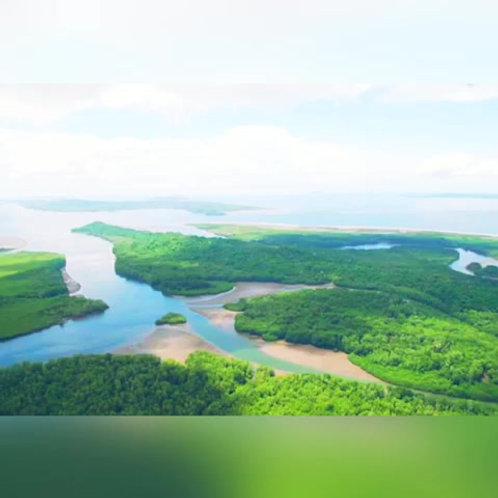 Terreno Panama Isla Chiriqui