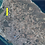 Thumbnail: Terrein AUA Bubali