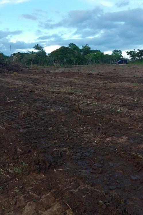 Terreno Panama Districto Cocle