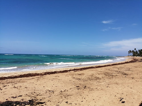 Terrenos Rep Dom Punta Cana