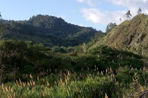 Terreno Rep Dom  Mata de Platano, Jarabacoa, La Vega