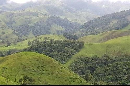 Terreno Costa Rica Tronadora Tilaran, Camino Rio Chiquito