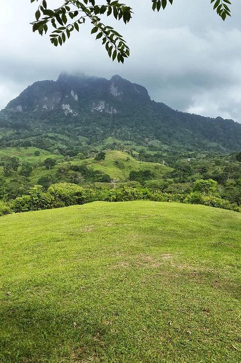 Terreno Panama Via Interamericana