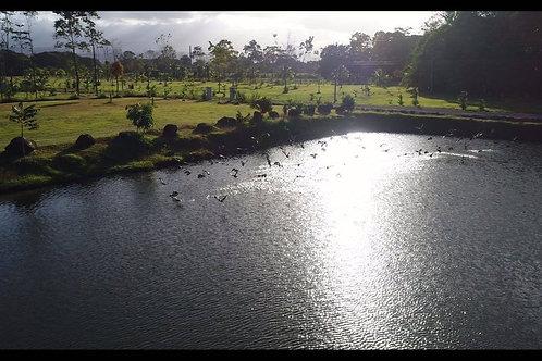 Terreno Costa Rica Sarapiqui