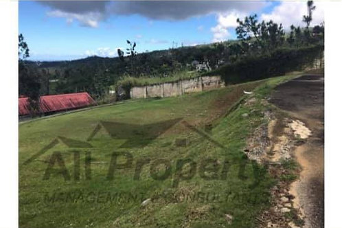 Terreno Puerto Rico Canovanas Urb.Brisas del Yunque Barrio Cubuy
