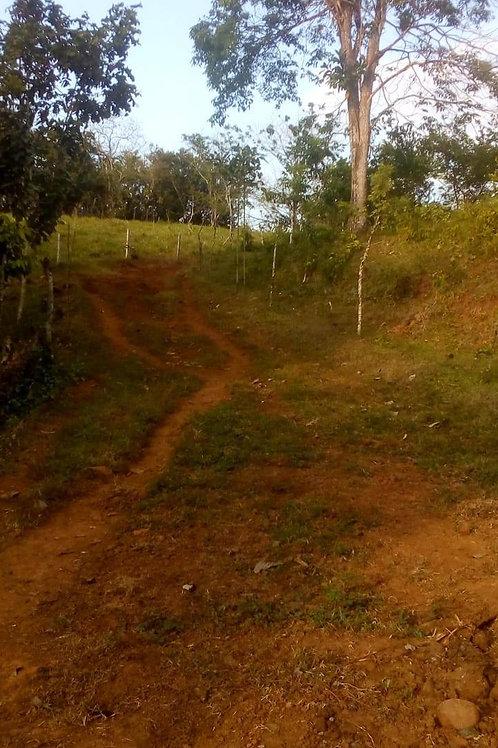 Terreno Costa Rica Guatuso de Alajuela