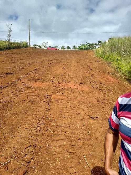 Terreno Puerto Rico Comerio Naranjito