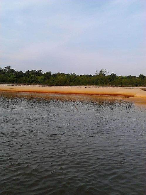 Finca Colombia Puerto Lopez