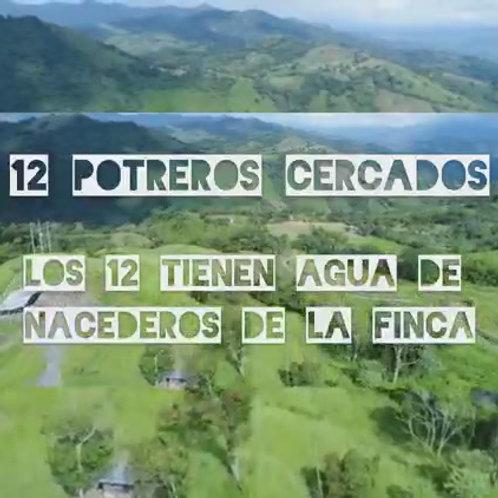 Finca Colombia Vergara Cundimarca