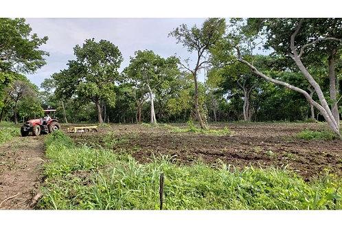 Terreno Panama Cienega Vieja, Anton,Cocle