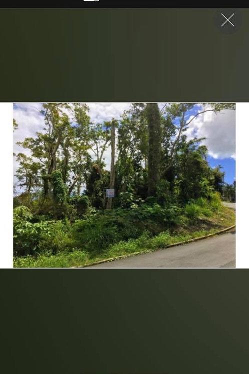Terreno Puerto Rico Humacao Barrio Mariana