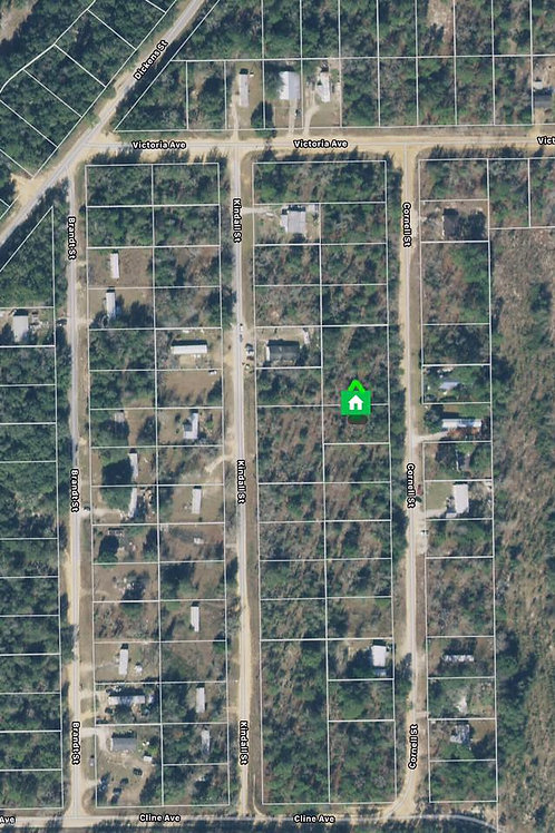 Land Florida Sunny Interlachen area Putnam County