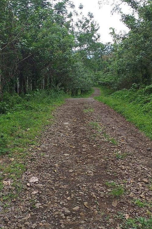 Terreno Costa Rica Canalete de Upala