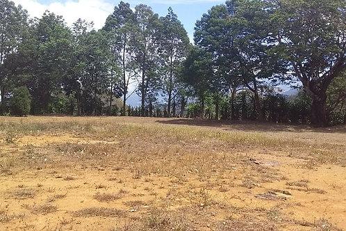 Terreno Costa Rica Gran GAM Desamparados Turrialba