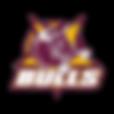 Region_Logo CQ.png