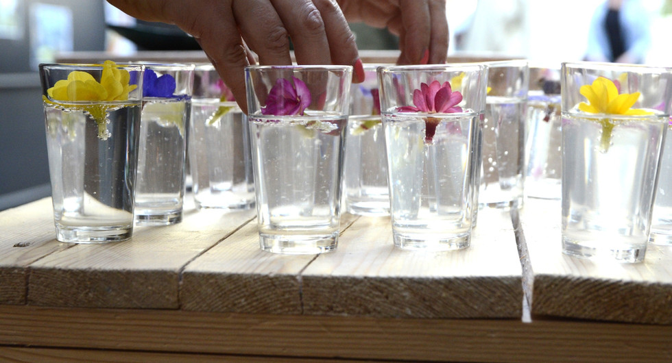 Welkomsdrankje voor Hermes Netwerk BABEL: eetbare primula's (foto Patrick van Engelen)