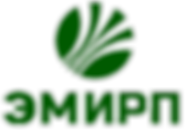 Лого ЭМИРП для документов.png