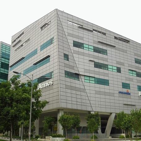 Amnios & Synapse Building