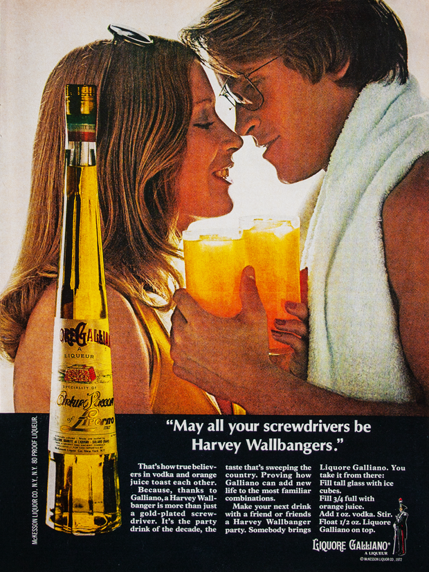 """""""MAY ALL YOUR SCREWDRIVERS BE HARVEY WALLBANGERS."""""""