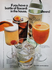 IF YOU HAVE A BOTTLE OF BACARDI IN THE HOUSE, CHEERS!