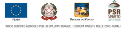 PSR Veneto.png