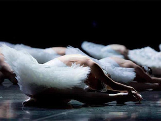 It's World Ballet Day!