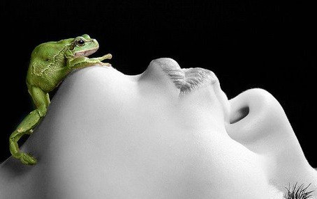Have You Been Kissing Too Many Frogs?