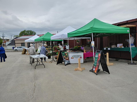 How Northern Ontario Farmers Market Vendors are Coping with COVID_19