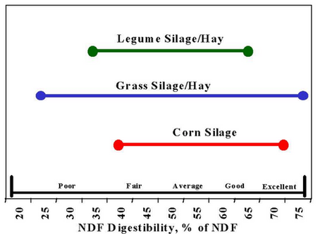 Forage Focus 2019: Agronomic Considerations For Forage Production and Quality