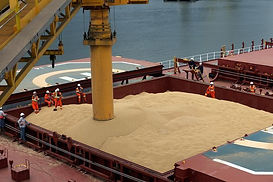 soybean meal loading.jpeg