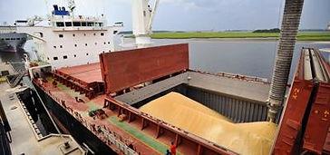 soybean shipping 1.jpg