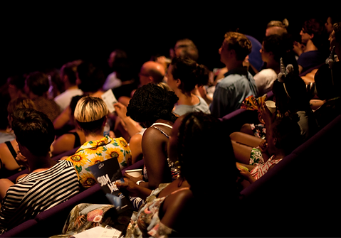 Rows of people sit ready waiting to watch a performance. The image is taken from behind, so we can see the backs of their heads. There are five rows of purple chairs. Light catches a row of people seated in the centre of the image.