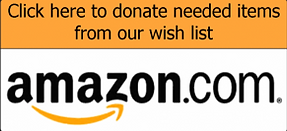 Amazon Animal Shelter Wish List