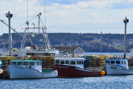 Changes to act mean more fishing wealth headed back to Pictou County