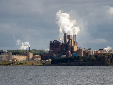 N.S. to spend $19M to dredge Boat Harbour after Northern Pulp fails to submit cleanup plan