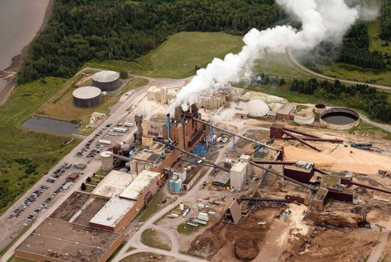 Counterpoint: Setting the record straight about Northern Pulp woes
