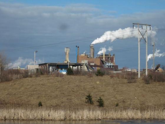 Friends of Northumberland Strait say Iain Rankin hasn't done his homework on pulp effluent