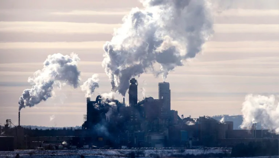 Northern Pulp stakeholder committee met with skepticism