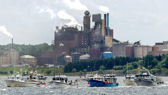 N.S. pays millions for Northern Pulp's treatment facility design