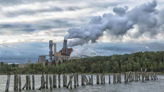 Pulp non-fiction: Why a book about a Nova Scotia pulp mill has set off a firestorm