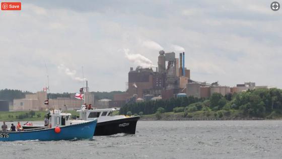 N.S. group seeks data on effluent leak from Northern Pulp pipeline