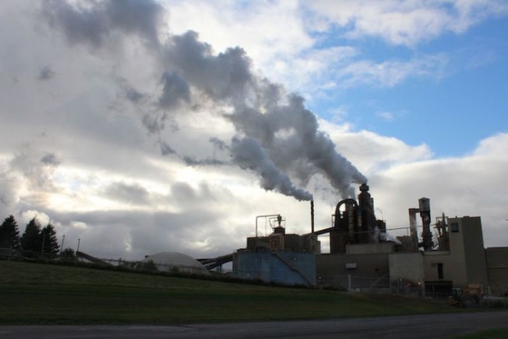 The Herald's news reporting on Northern Pulp Mill looks like a packaged advertising deal