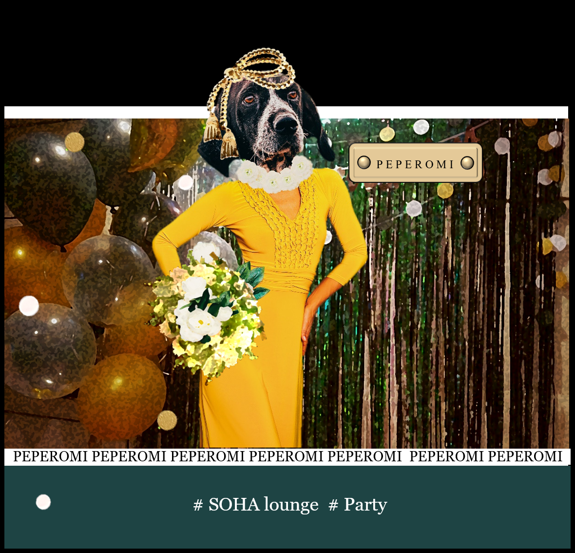 SOHA lounge Party