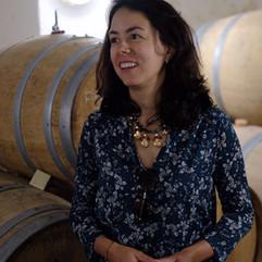 Visita a vinicolas