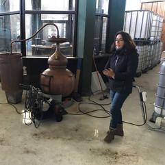 Trabalho de enoturismo em vinícola